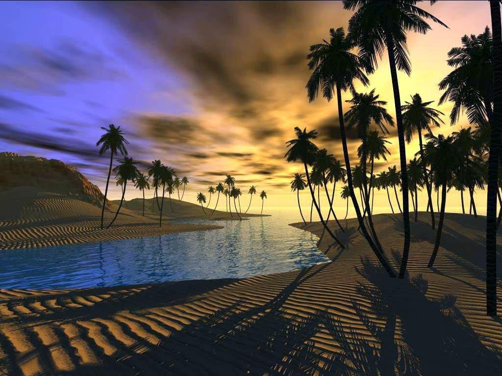 oasis2.jpg